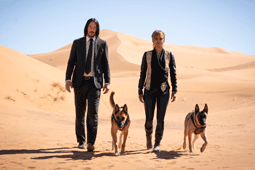 John Wick 5 confirmed to be shooting back-to-back with John Wick 4