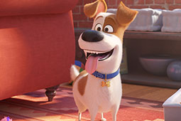 National Pet Day: 8 adorable pet movies to watch with the family