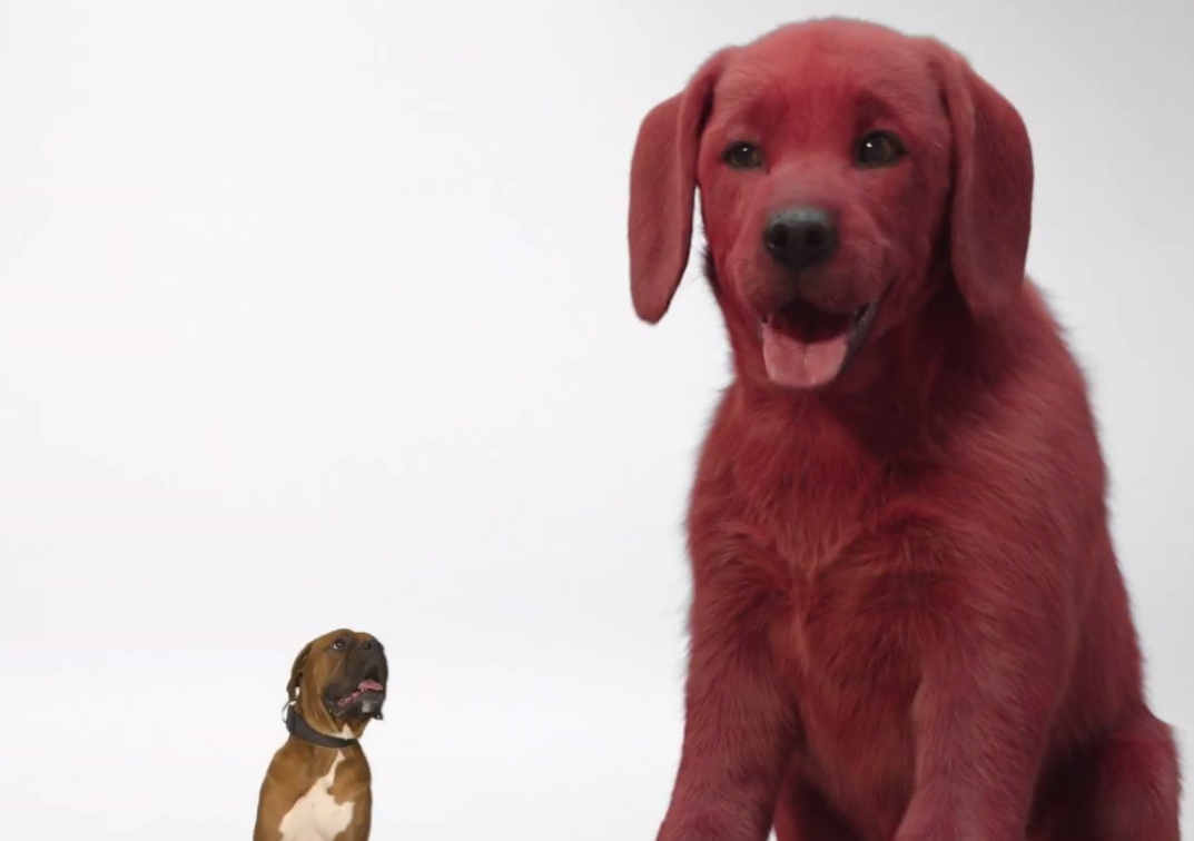 Clifford the Big Red Dog: first look at the 2021 family movie